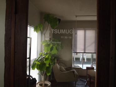 TSUMUGI3
