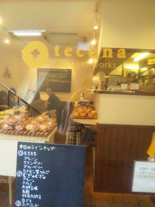 tecona2