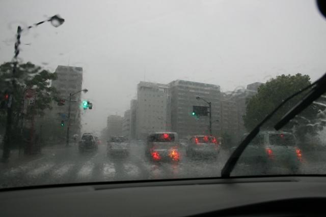 IMG_5173 雨のドライブ w