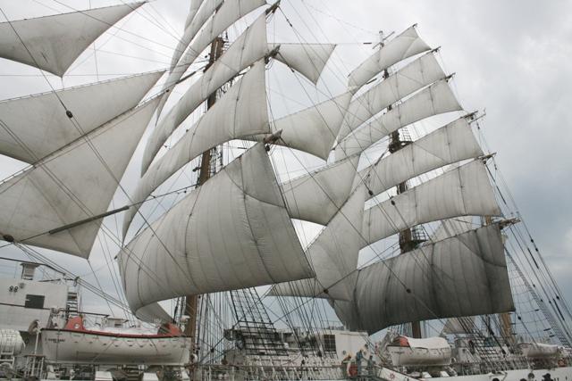 IMG_7092 海王丸 風をはらむ帆 W