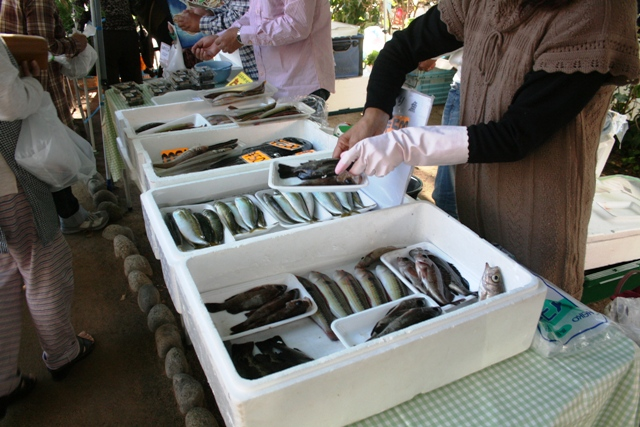 IMG_7306 朝市の魚屋 W