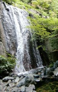 那須、会津の旅 239