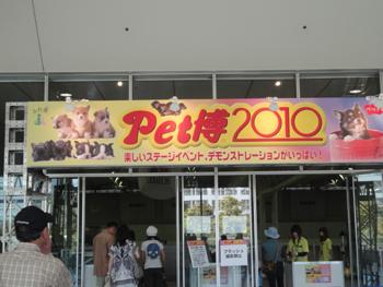 pet_haku2010 005_1