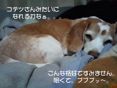 2011-04-18 11.51.51_1