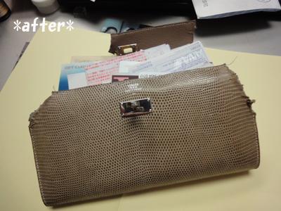 wallet 001_1