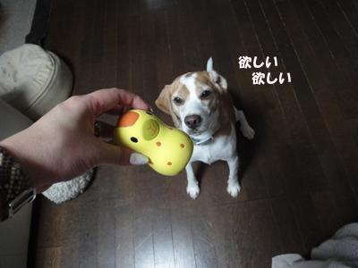 tsuru 010_1