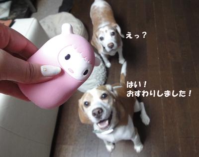 tsuru 016_1