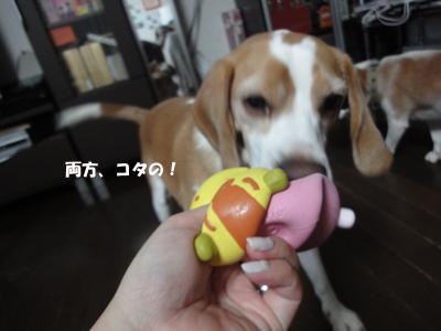 tsuru 029_1
