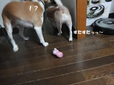 tsuru 047_1