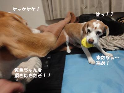 tsuru 049_1