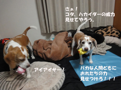 tsuru 064_1