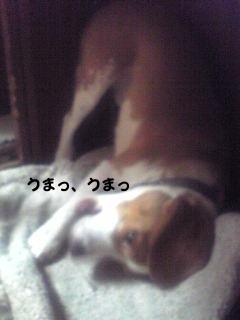 Image2293_1.jpg