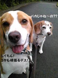 Image360_1.jpg