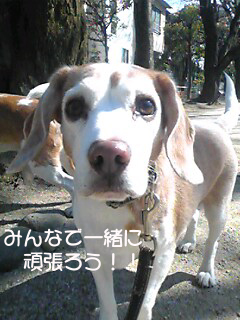 Image590_1.jpg