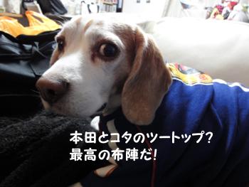 JP_5.jpg