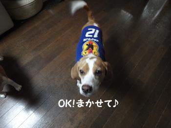 JP_6.jpg