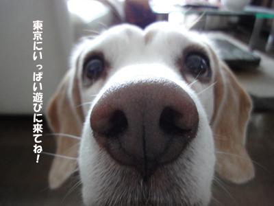okan_2.jpg