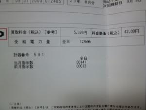 P1010355_convert_20110910223839.jpg