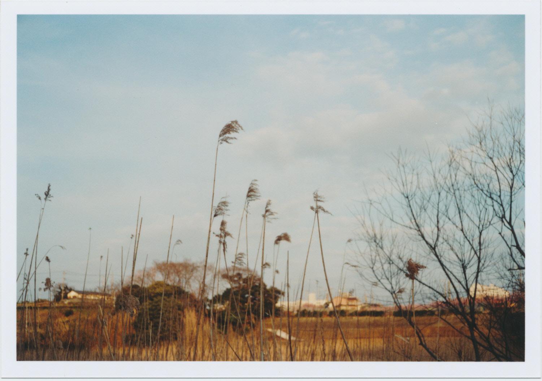 249_冬と春