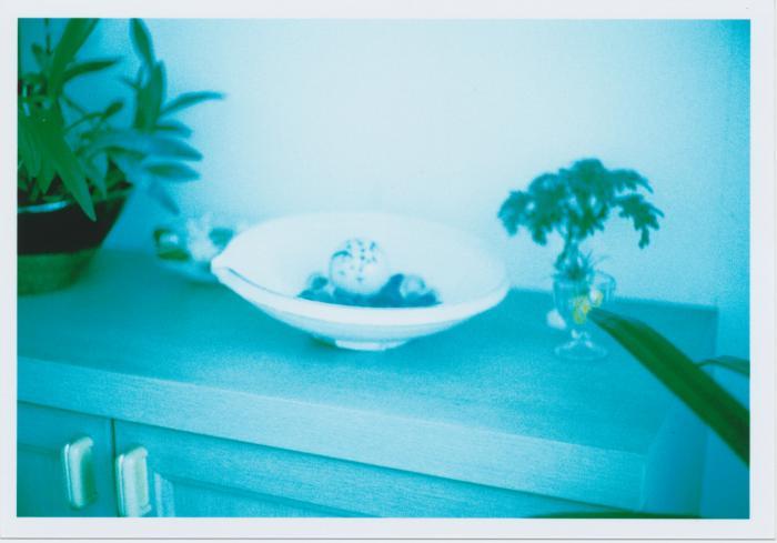 玄関ギャラリー_2010summer