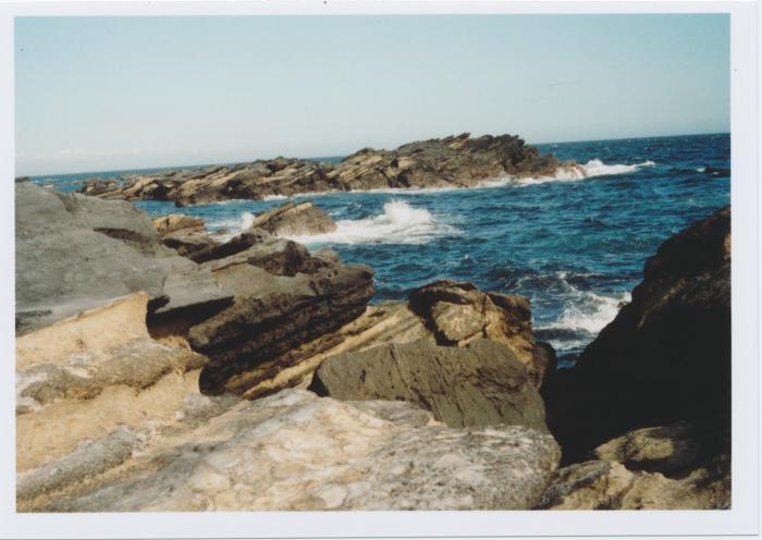 波と潮風に削られた岩