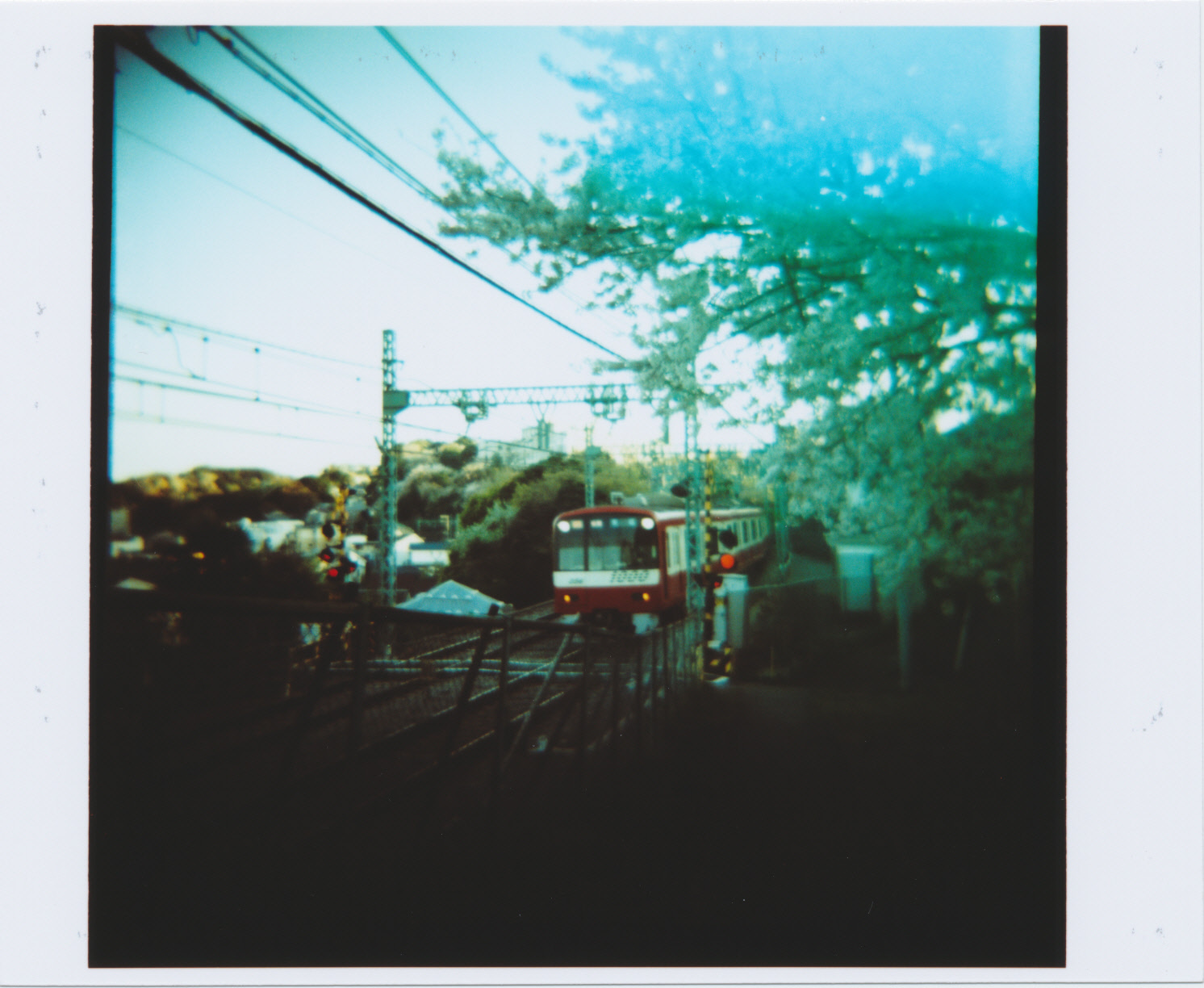 KODAK_EKTACHROME_E100G_sakura-train_01