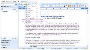 Writer 5