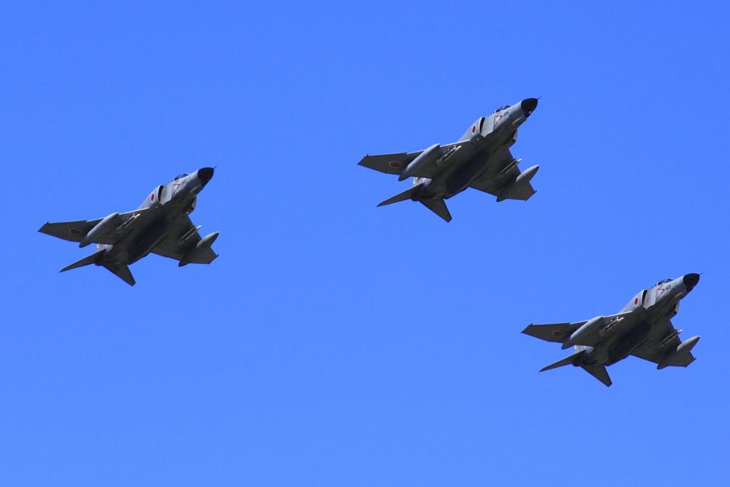 rvw_fighter_2.jpg