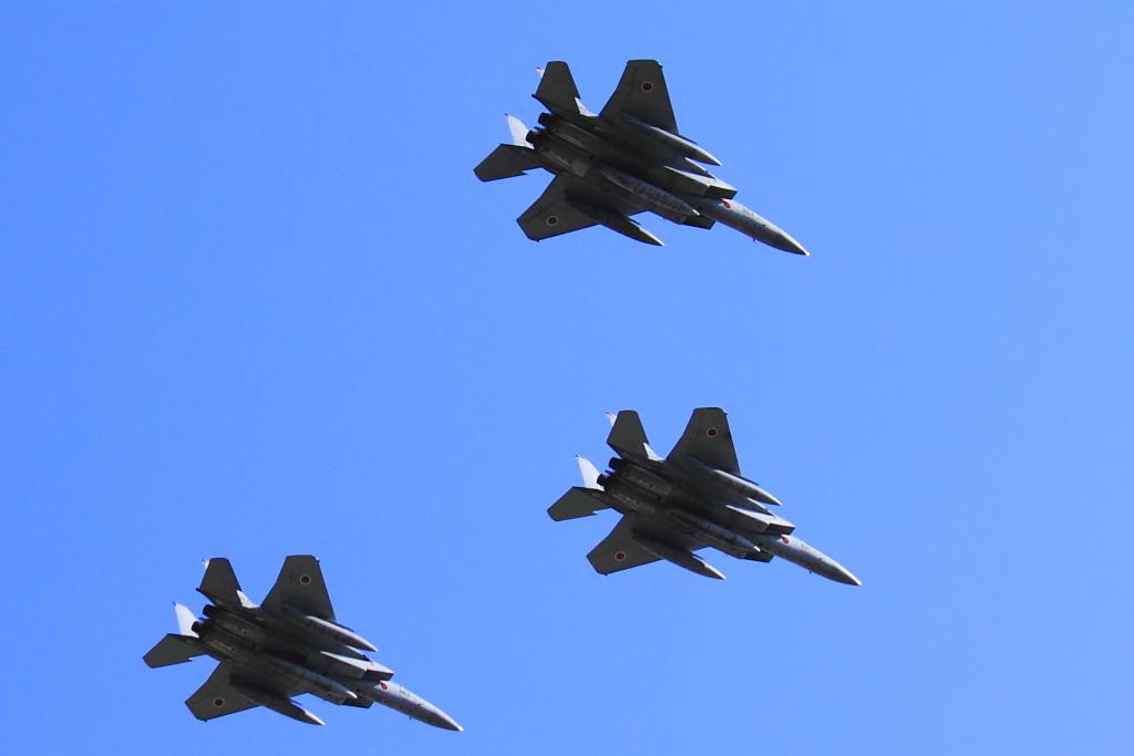 rvw_fighter_4.jpg