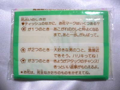 199302nakayoshi-9.jpg