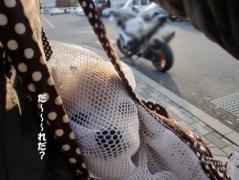 7_20101208154453.jpg