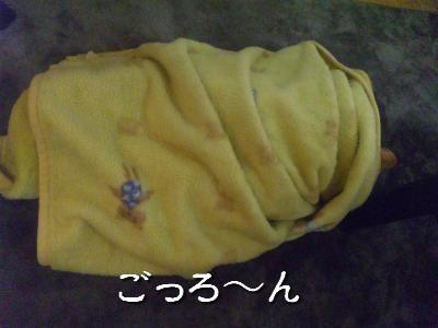 100111_222813_convert_20100122221931-1.jpg