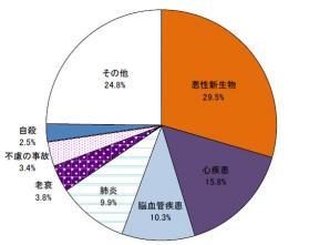 主な死因別死亡数の割合
