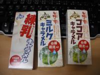hokkaidou_kykarameru_3.jpg
