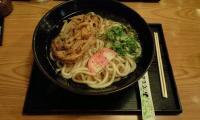 kakiage_udon_3tama.jpg