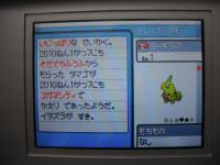 yogirasu_irochi.jpg