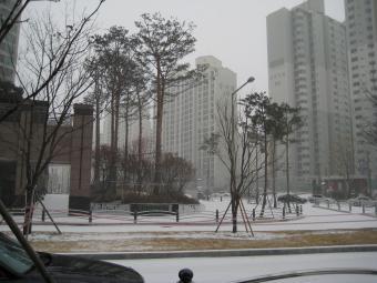 雪12月27日