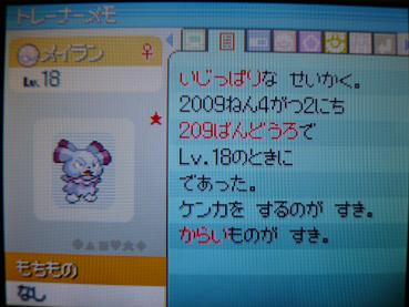 P1010343.jpg