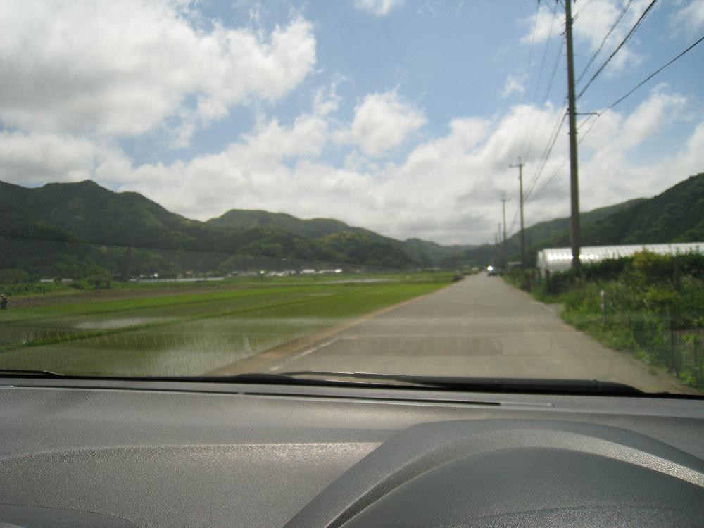 田んぼ 2011.05.24