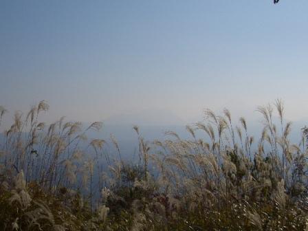 山頂からCIMG0275