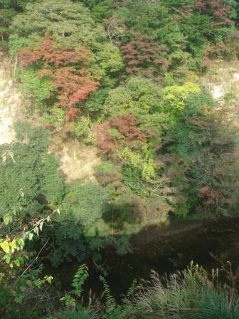 2009.11.7秋のイベントその6(亀山) 001