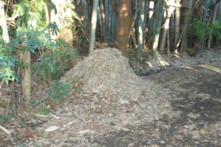 2009.12.31 12月の年越しの堆肥準備
