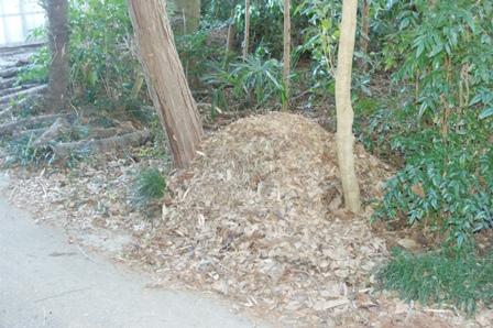 2009.12.31 12月の年越しの堆肥