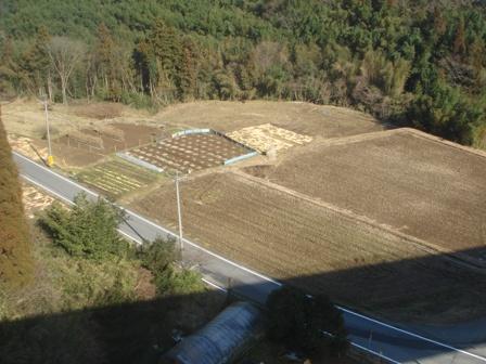 2010.1.15 千葉県建設技術協会視察(橋下の畑) 004