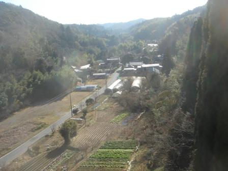 2010.1.15 千葉県建設技術協会視察(橋下の畑) 003