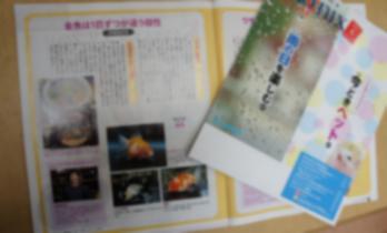 2011.5.21ブログ (4)