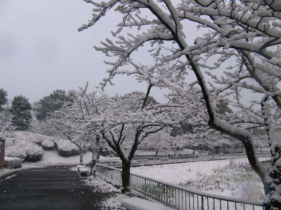 1日名城公園-4-25