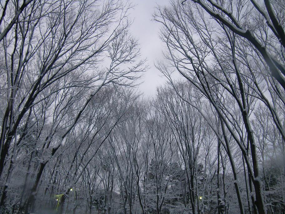 1日名城公園 -3-25