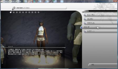 SS20100903-キャラ作成1.jpg