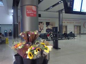 ダブリン空港第二ターミナル